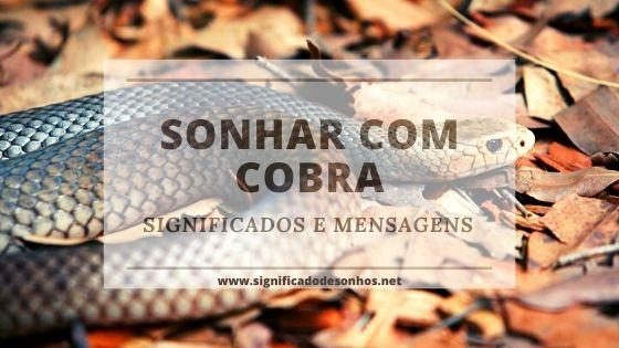 significados de sonhos com cobras