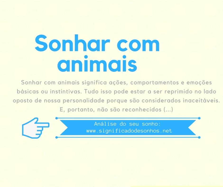 significado sonhar com animais
