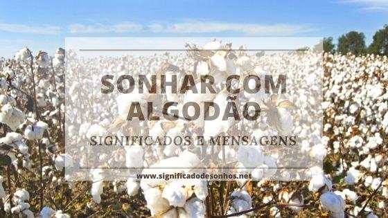 significados de sonhos com algodão