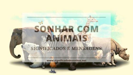 significados de sonhos com animais