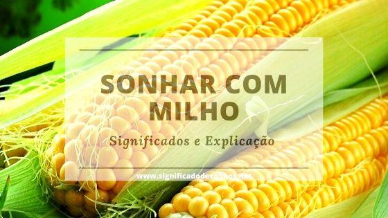 Descubra qual a simbologia dos sonhos com milho