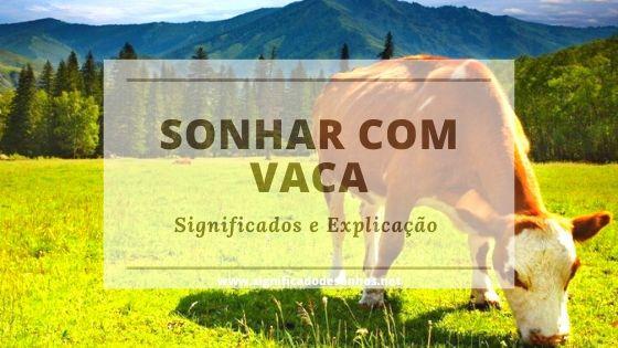 Descubra qual a simbologia de sonhos com vacas