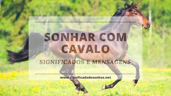 decifre o significado dos sonhos com cavalos