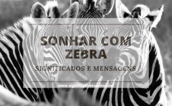 Sonhos com zebras: quais os significados?