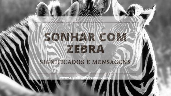Sonhos com zebras significam o quê?