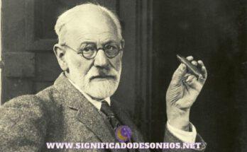 Sigmund Freud: teorias e conceitos