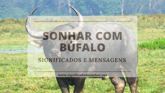 Conheça o significado de sonhar com búfalo