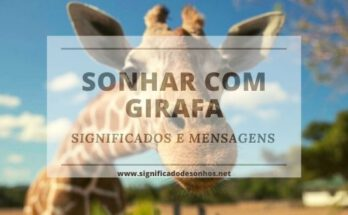 Qual o significado de sonhar com girafa?
