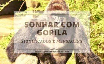 Saiba todos os significados de sonhar com gorila