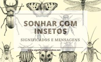 Qual o significado de sonhar com insetos?