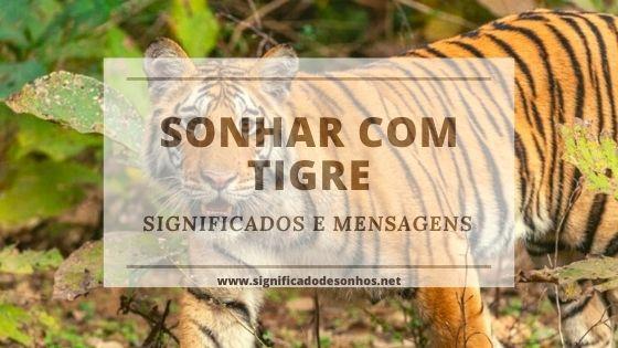 Quais os significados de sonhar com tigre?