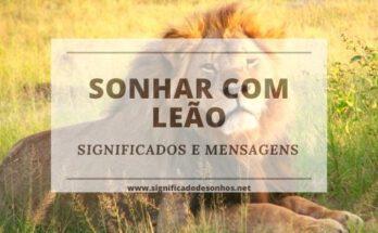 Descubra os significados de sonhar com leão