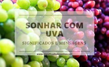 Quais os significados de sonhar com uva?