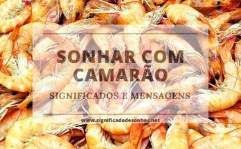 Quais os Significados de sonhar com camarão?