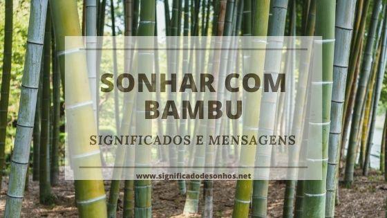 Quais os Significados de Sonhar com bambu?