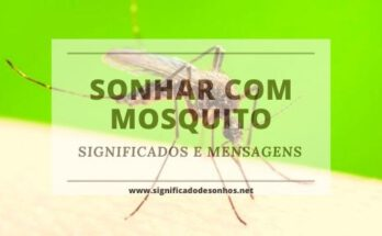 Desvende os Significados de Sonhar com mosquito